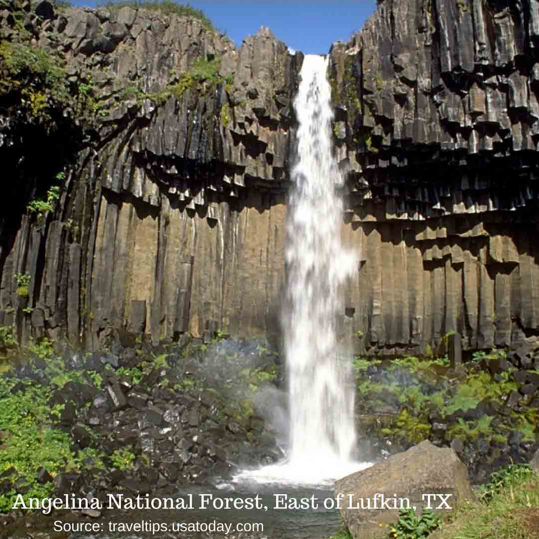 national-parks-and-recreation-month-Angelina-National-Forest