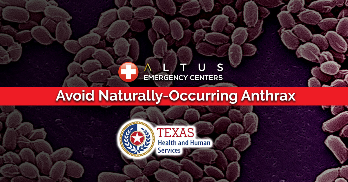 DSHS Warns Texans to Avoid Naturally-Occurring Anthrax